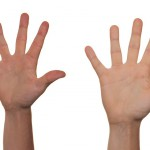 Guide Handle Grip Guiding Voluntary Volunteer
